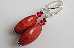 oliwki korala czerwonego