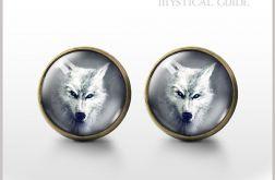 Biały wilk - antyczny brąz - kolczyki wkrętki