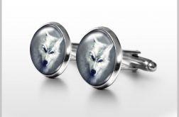 Biały wilk - spinki do mankietów