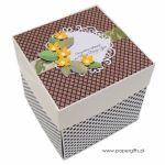 Box na ślub z tortem w ekologicznych kolorach - Pudełko z miejscem na prezent ślubny