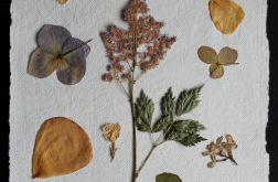 Asamblaż kwiatowy
