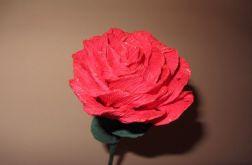 Róża różowa ze złotym brokatem