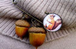 Wiewiórka i magiczne żołędzie