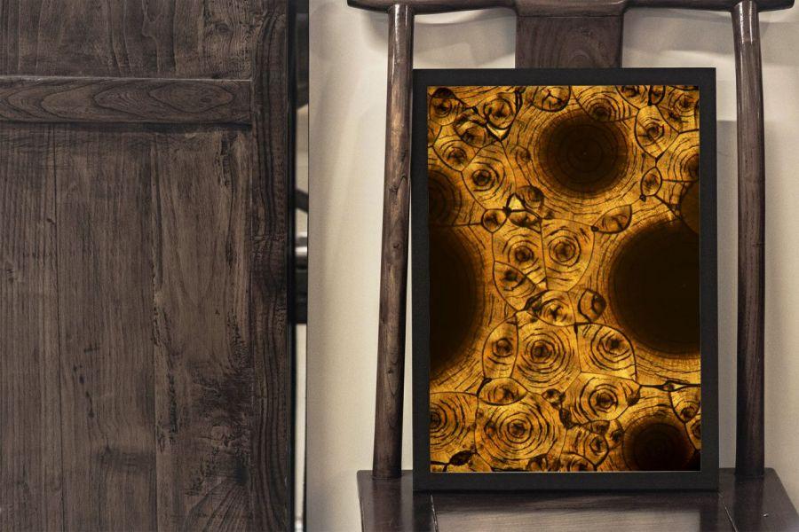 Obraz Kofeina pod mikroskopem