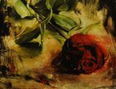 """Obraz """"Róża"""""""