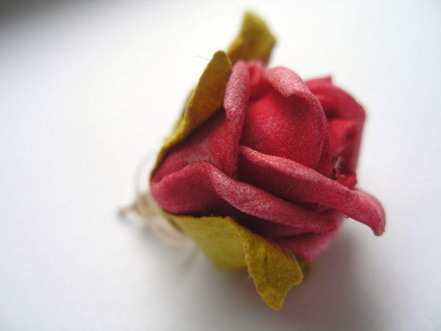 Kolczyki - piankowe róże