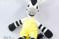 Zebra w żółtych spodenkach