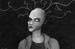 Mucha - oryginalny rysunek 0902