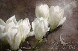 Obraz Biała magnolia - płótno - malowany