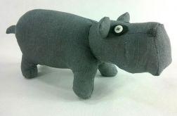 Hipopotam Mały
