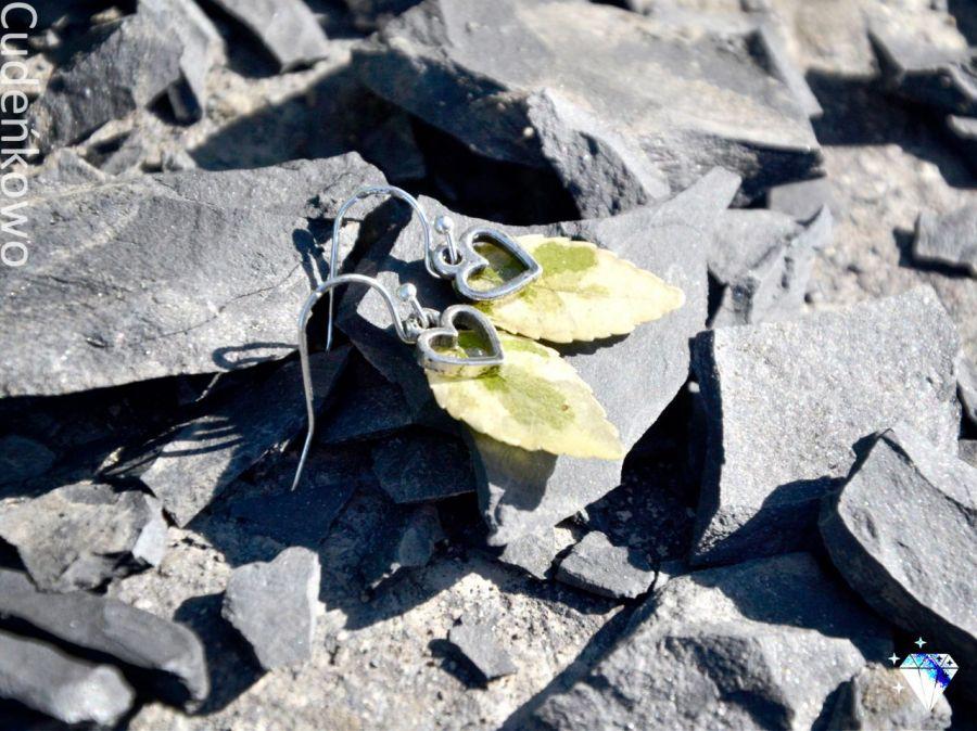 Zatopki liście bluszcz z sercem - 4