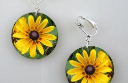 Żółte kwiaty II - klipsy