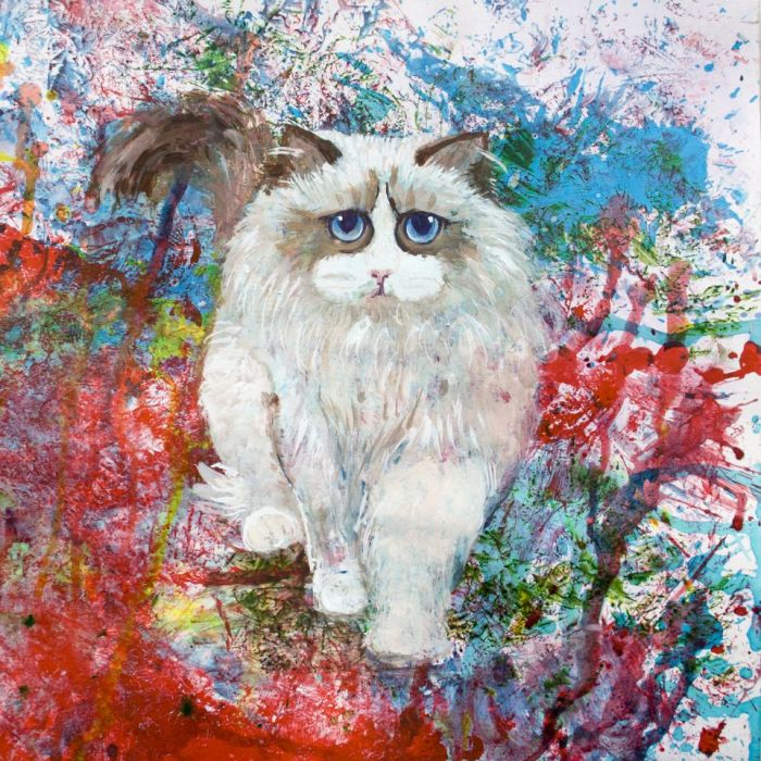 Kot ragdoll z serii Psy i koty