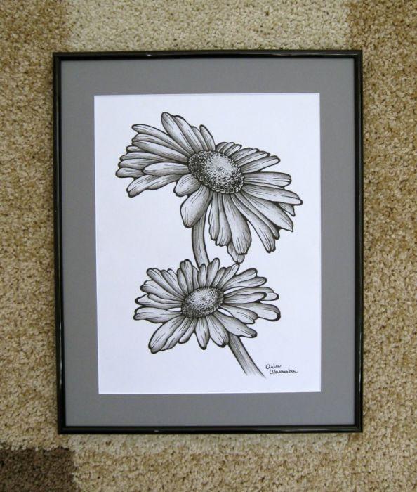 Margaretki - grafika czarno - biała.