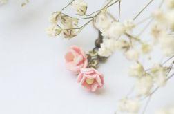 Letnie kwiaty - bergenia