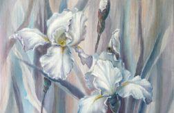 Białe Irysy, ręcznie malowany obraz olejny