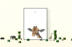 """Plakat """"Żyrafa"""""""