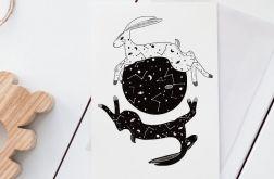 Plakat gwiezdny królik 50X70 B2