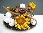 Przepiórcze jaja w jaskini z kory