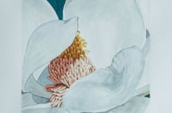 Botanical art, motyw roślinny, biel, zieleń