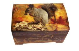 Kuferek z wiewiórką