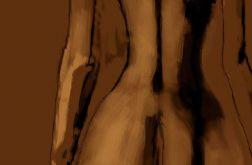 Obraz akt Kobieta tyłem 120 x 80