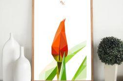 """Plakat """"Tulipan"""""""