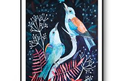 Night bird wydruk ilustracji