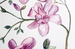 Malowana magnolia