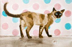 Malowany akwarelami Kot syjamski z kółkami