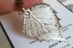 Listek brzozy w srebrze 925