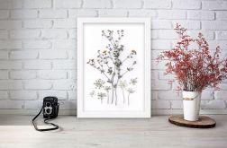 Obrazek A4 Prawdziwe suszone kwiaty 003
