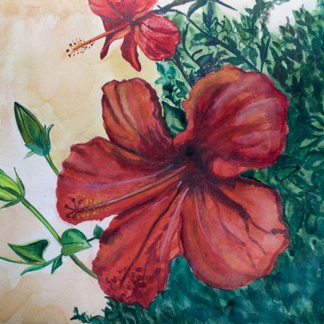 Malowany kwiat hibiskusa