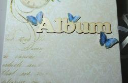 Album idealny na prezent ślubny