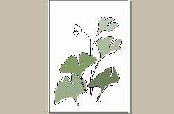 Miłorząb liście - grafika minimalizm