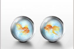 Złota rybka - kolczyki wkrętki