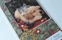 Kartka świąteczna, pies, kot