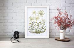 Obrazek A4 Prawdziwe suszone kwiaty 007