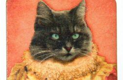 Magnes Kot Dla miłośnika zwierząt