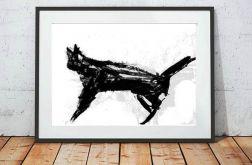 30x40cm - biało czarny plakat z kotem