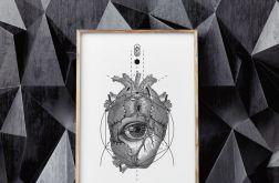 Plakat obraz Anatomia Serca 30X40