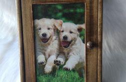szafka na klucze dla miłośników psów