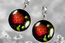 Magiczny kwiat nocy- Kolczyki z grafiką
