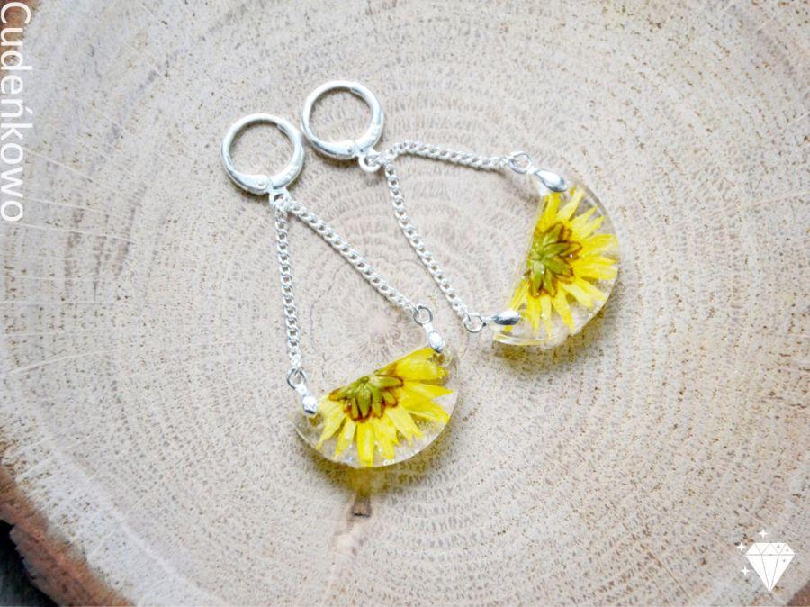 Zatopki żółte kwiaty - 3