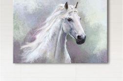 Obraz - Biały koń 100x70 - wydruk na płótnie
