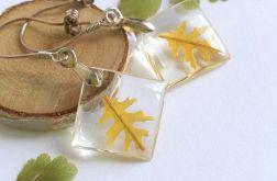 Kolczyki- żółte liście